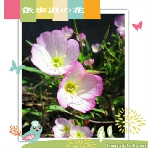 15/19 花 .jpg